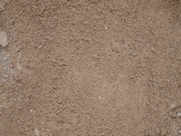Grit Sand (Best) - Dutton Builders Merchants Ltd Product image
